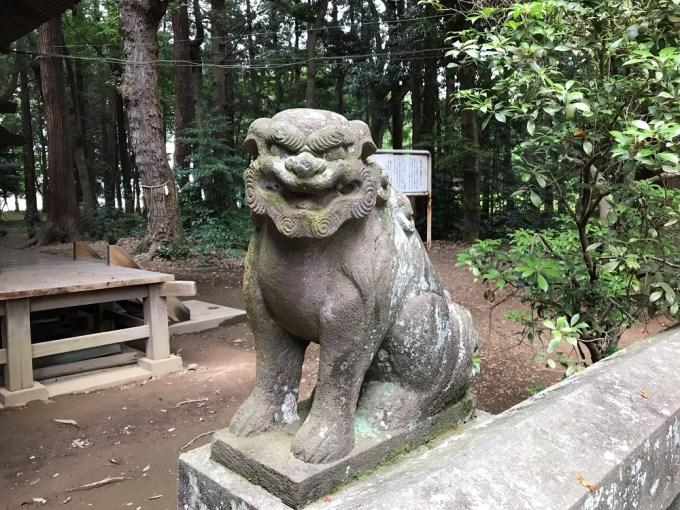 間々田八幡宮狛犬3右