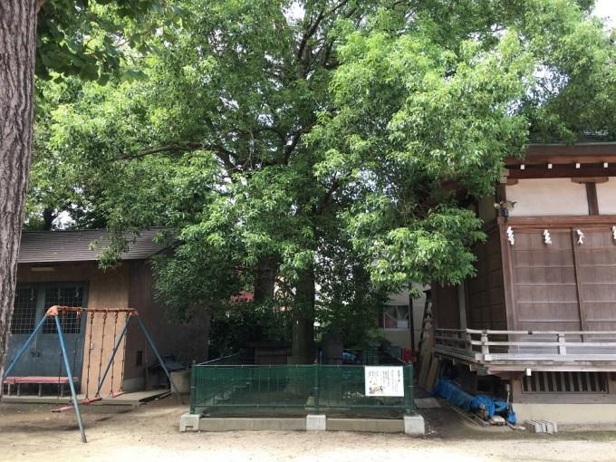 越谷香取神社亀吉の家