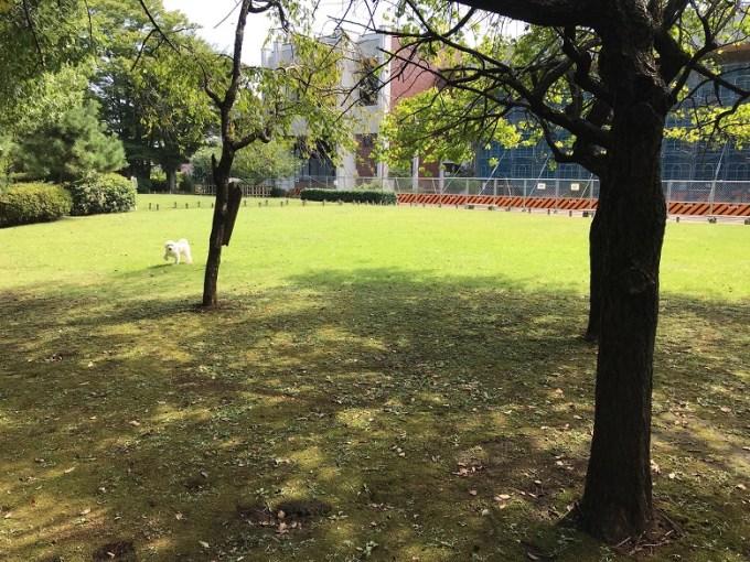 蕨城址公園
