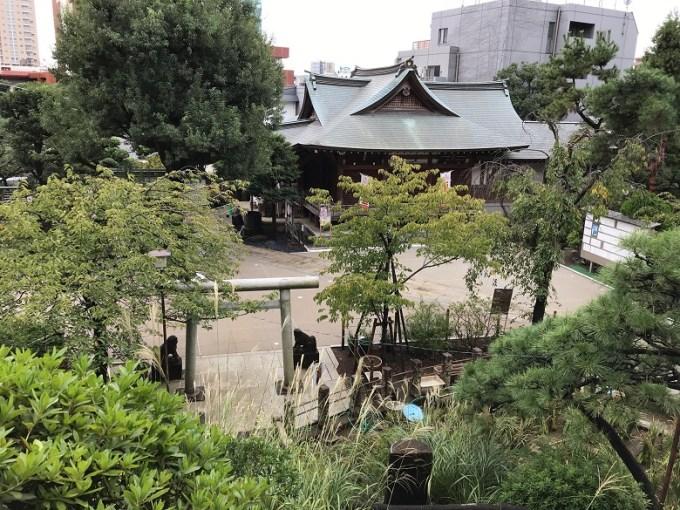 鳩森八幡神社山頂からの眺め