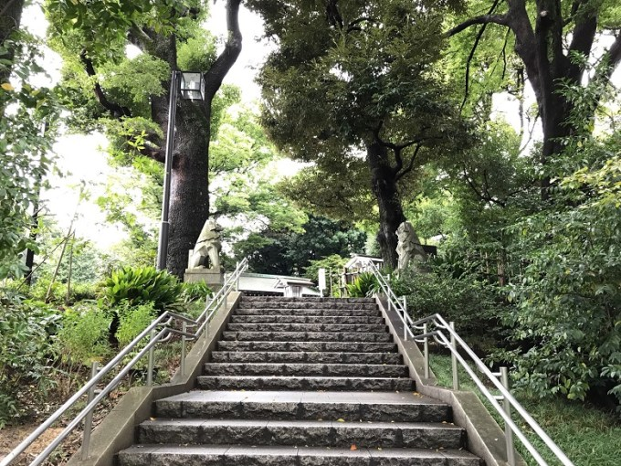 東郷神社階段