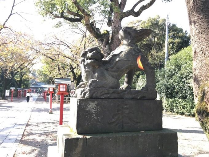 鷲宮神社狛犬右