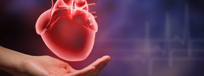 aort-kapak-hastaliklari-ve-anevrizma-cerrahisi