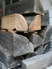 素材の桐の木