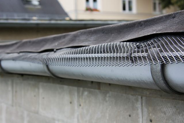Roof gutter with mesh litter guard