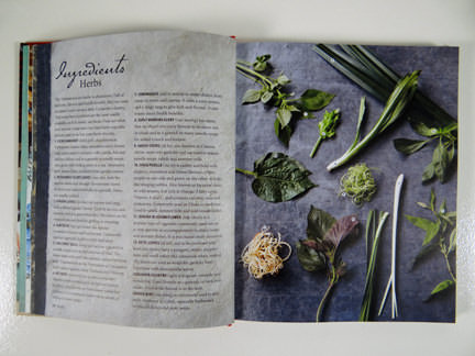 """herb photo from """"My Vietnamese Kitchen"""" cookery book"""