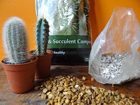 Vintage cups and supplies to plant up with mini cacti