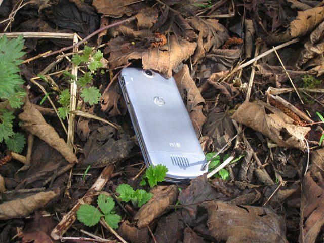 Mobile phone lost in undergrowth