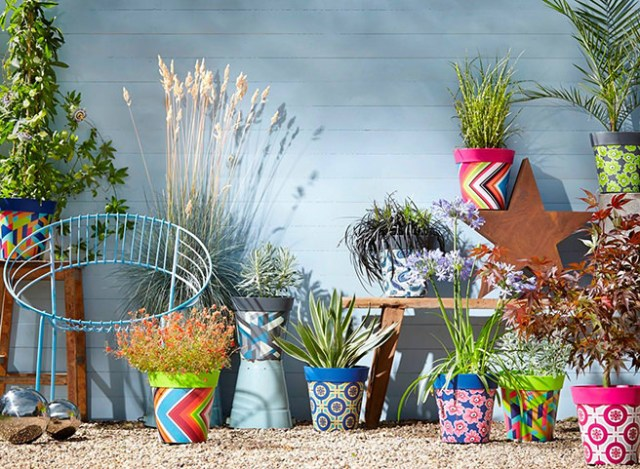 Collection of colourful garden plant pots