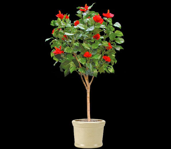 Artificial hibiscus tree
