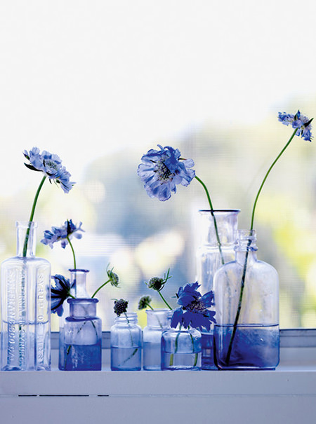 blue bottles holding cornflowers