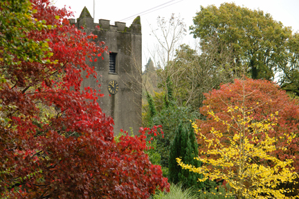 trees with beautiful autumn leaves in the churchyard, Ambleside, Lake District, Cumbria