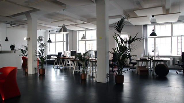 Plants dotted around an open-plan office