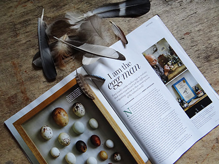 'I am the Egg Man' article title page from the April 2014 Homes & Antiques magazine