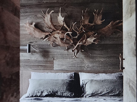 collection of antlers above a bed