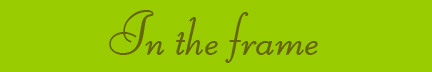 'In the Frame' blog post banner
