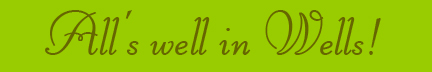 'All's well in Wells!' blog post banner