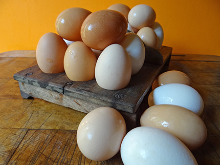 egg glut - pile of eggs on antique wooden egg tray