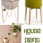 Price Points: House plant stands