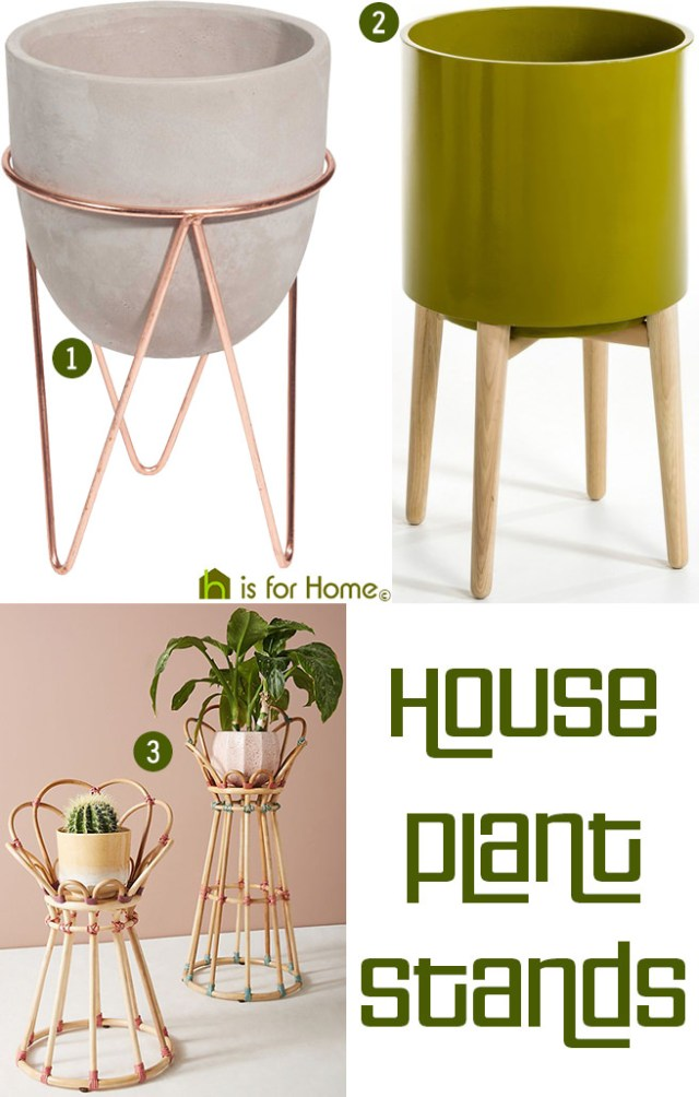 House plant stands | H is for Home