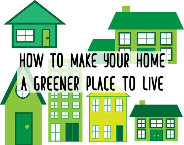 How to make your home a greener place to live