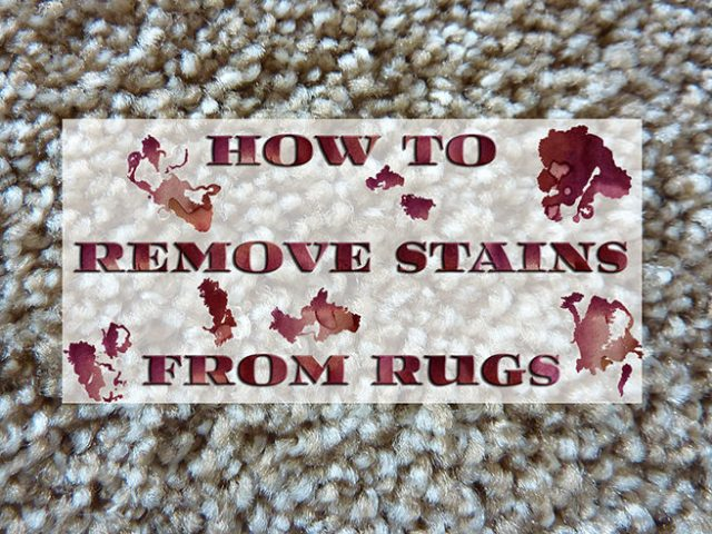 How to remove stains from rugs | H is for Home