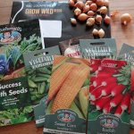 Allotment Diary: Gone to Seed