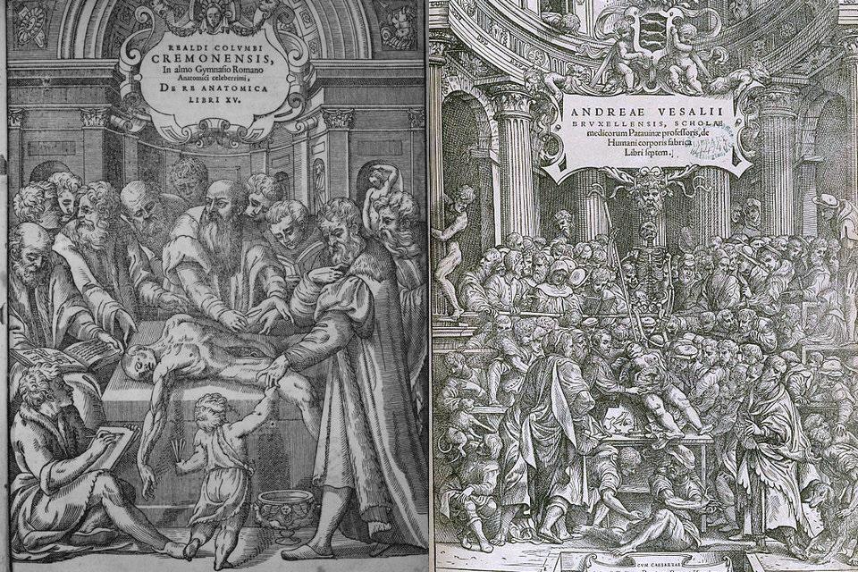 Medizinische Renaissance – HiSoUR Kunst Kultur Ausstellung