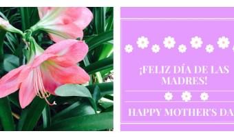 Tarjetas gratis para el día de las madres