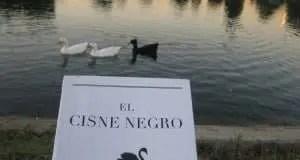 Pato negro, cisne negro
