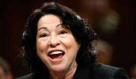 Sotomayor, conservative judge
