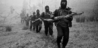 2019: la guerrilla mexicana en los tiempos de lópez obrador
