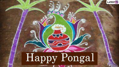 New Pongal Rangoli Designs 2021 & Muggulu Patterns: Make beautiful Rangoli with dot and pot on crop festival Pongal, see the adorable designs