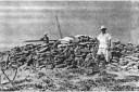 Photographie des vestiges en 1954 ©Tromelin, L'île aux esclaves oubliés, CNRS Editions, 2015, p. 115.