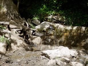 Fontaine Clòt d'en Ribière