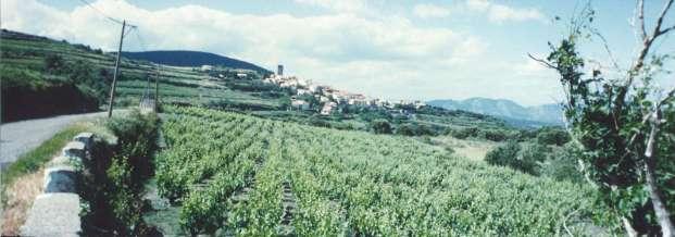 Prats de Sournia en 1994