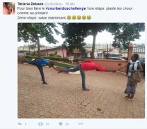 hashtag-cameroun-twitter-2016-42