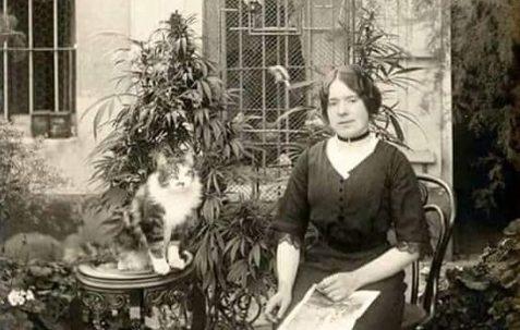 Historia y biografía de Juana de Ibarbourou