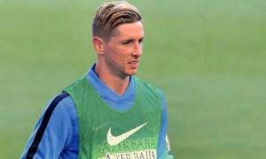Biografía de Fernando Torres