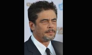 Biografía de Benicio del Toro