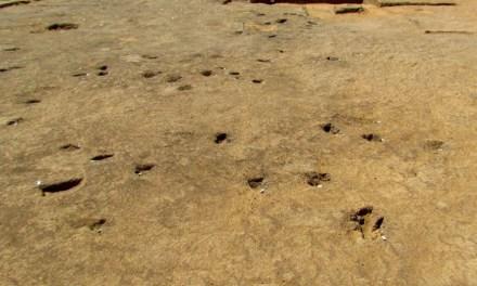 Desentierran asentamiento africano de 70.000 años de antigüedad