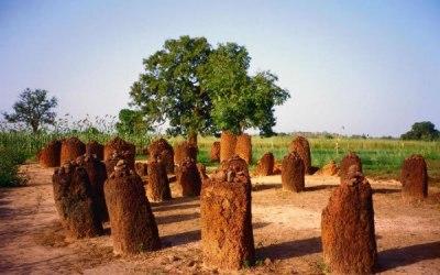 Los Monolitos de Piedra de Senegambia: el grupo más grande de complejos megalíticos registrados en todo el mundo