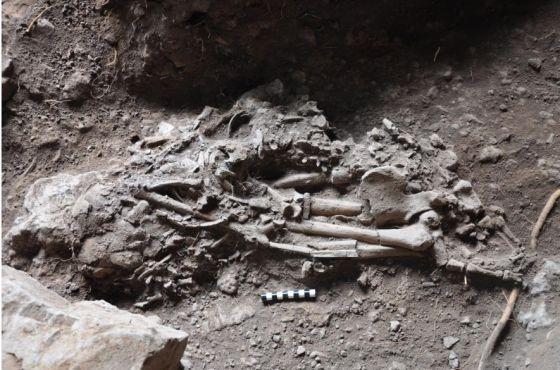El estudio que afirmó que todos los africanos tienen ADN neandertal era un error