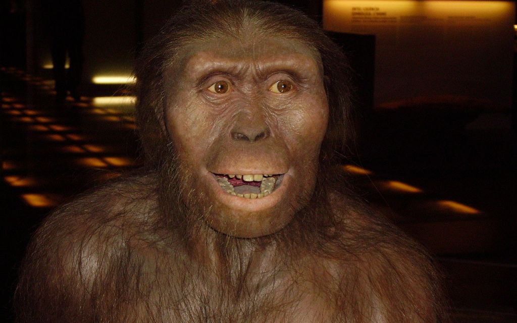 La impresión 3D ayuda a esclarecer la muerte de Lucy 3,2 millones de años después