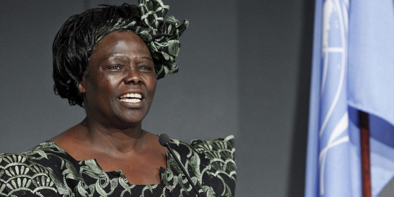 Los premios Nobel africanos