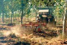 El laboreo del suelo en choperas conduce a un aumento de la reserva de agua útil para los chopos, incidiendo en su crecimiento.