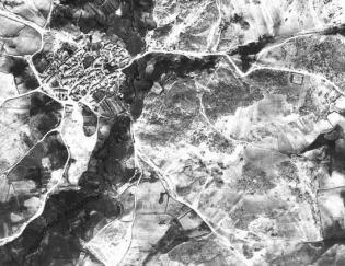 Tomo+II.+Futuro+de+los+bosques+y+Mapa+Forestal+_Página_082_Imagen_0001