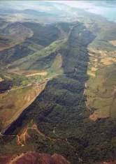 Tomo+II.+Futuro+de+los+bosques+y+Mapa+Forestal+_Página_101_Imagen_0001