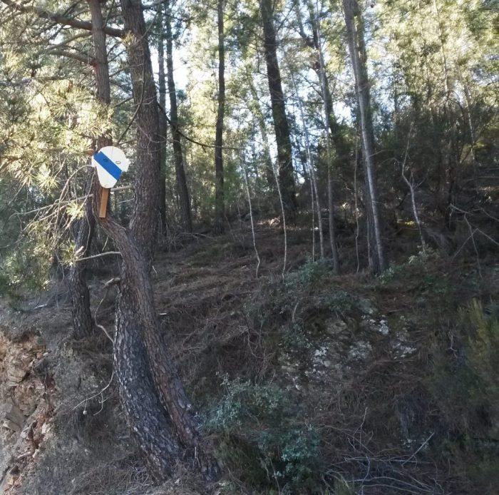 Unha máscara coa bandeira galega no Camiño de Inverno / noticiasvaldeorras.com