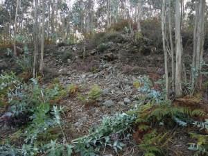 Restos dos muros do castro de Bexo/ XS